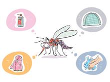 건강 지키는 천연 모기퇴치제 3가지
