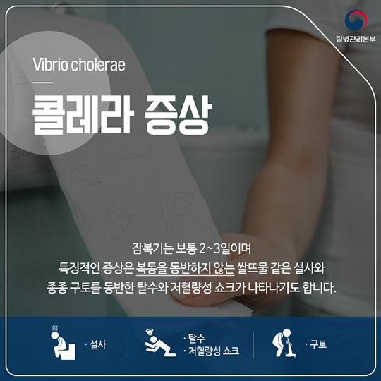 콜레라 증상 및 예방법