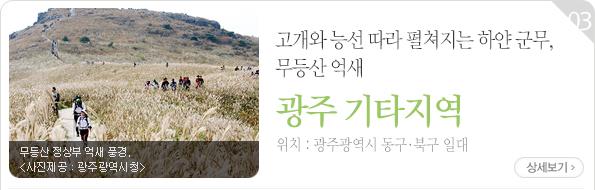 고개와 능선 따라 펼쳐지는 하얀 군무, 무등산 억새 - 광주광역시 동구·북구