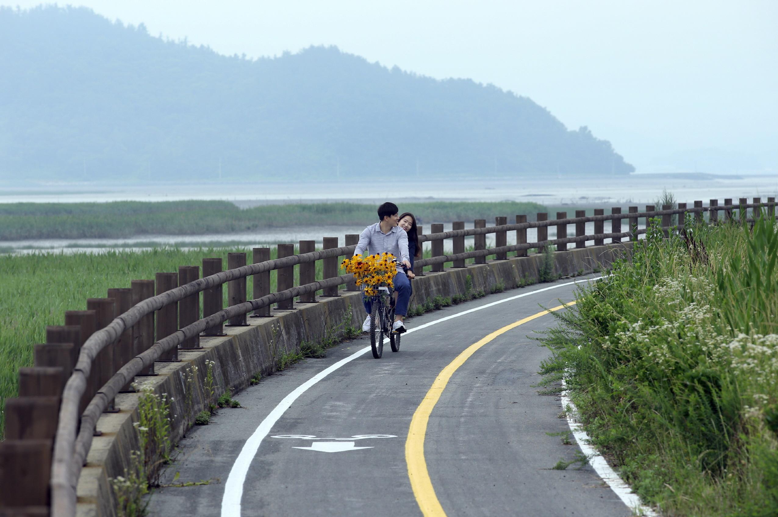 왼쪽엔 갈대숲이 오른쪽엔 코스모스. 자전거를 타도 좋겠다. 강진만의 바닷바람은 다르다.