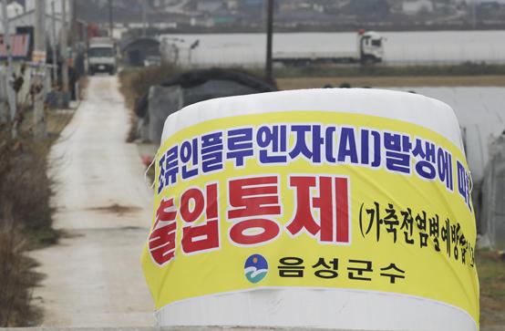 충북 음성군 맹동면 조류인플루엔자(AI) 확진 오리 사육 농가 인근에서 방역 당국이 도로를 통제하고 있다. <저작권자(c) 연합뉴스, 무단 전재-재배포 금지>
