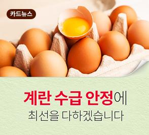 계란 수급 안정에 최선을 다하겠습니다.