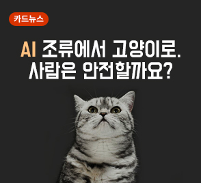 AI 조류에서 고양이로 사람은 안전할까요?