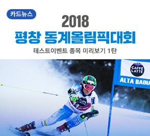 2018 평창 동계올림픽대회