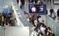 중국 AI 인체감염 급증…여행시 주의해야