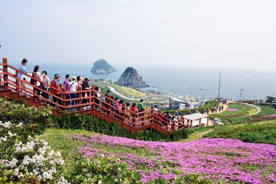 오륙도의 아름다운 해안절경과 함께 봄꽃이 상춘객들의 발길을 이끈다. (사진 = 부산광역시 남구)