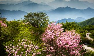 5월 황금연휴, 국립공원으로 오세요!