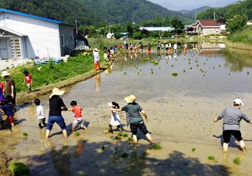 여름나기 좋은 '농촌마을 여행'