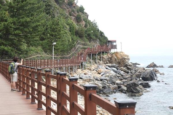 바다부채길 해안 산책로.