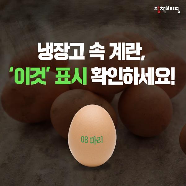 냉장고 속 계란, '이것' 표시 확인하세요!