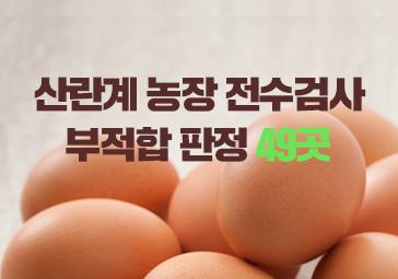 [표] 살충제 계란 검출 농가 31곳