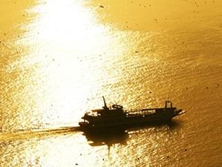 황금빛 바다에 물들다!