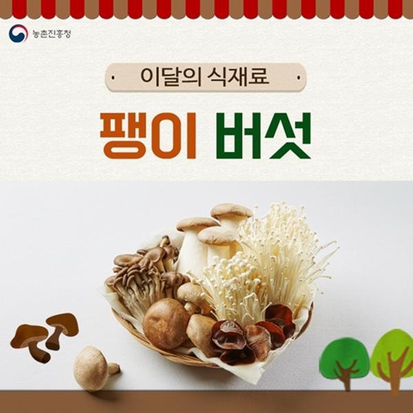 천 원의 보약 '팽이버섯'으로 가을식탁 차려요