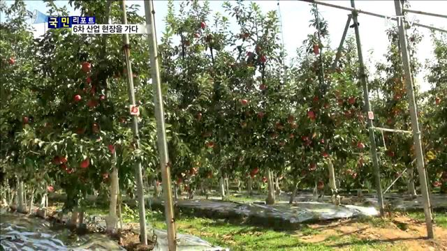 해피버스데이 타고 사과 농장을 가다