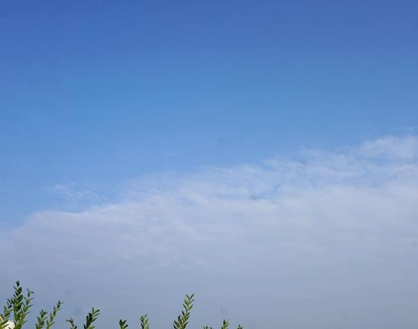 보정 안 한 세종 하늘 입니다. 망원렌즈가 무거워 단렌즈로 찍었어요. (감안해서 보시면 됩니다.)