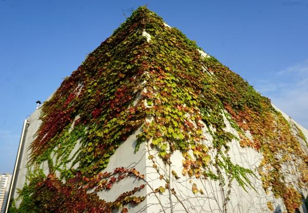 정부세종청사 옥상정원은 알록달록 수채물감을 흩뿌린 것 같습니다.