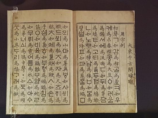 우리 민족의 얼과 혼이 담긴 훈민정음 해례본 유일본이다. 사진에서 보이는 장은 광화문의 세종대왕상이 펼치고 있는 장과 같다.