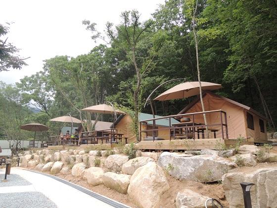 캠핑존 내 산막텐트 구역의 모습.