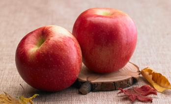가을 사과가 건강에 미치는 5가지 효과