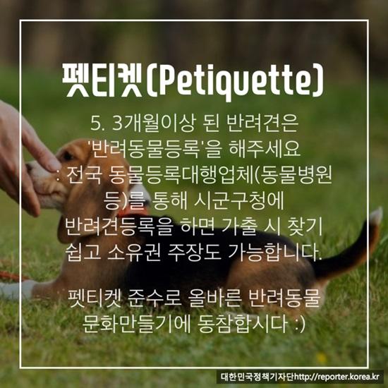 펫티켓 카드뉴스는 서대문구청의 '반려동물 문화만들기 에티켓'에서 발췌해 제작했습니다.