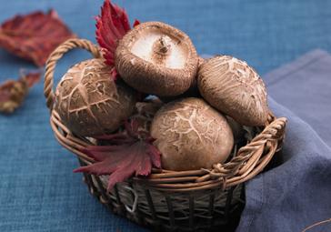 만성 염증 줄이는 10가지 식품
