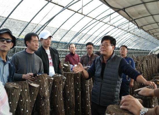 체험 참가자들이 버섯농장을 탐방하고 있다.