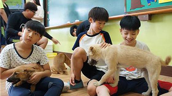 교실에서 학생들이 동물과 교감하는 활동을 하고 있다.