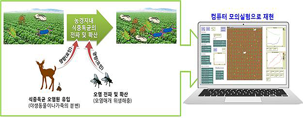 식중독균 오염 예측 프로그램 모식도(제공=농촌진흥청)