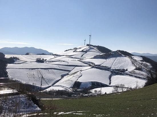 겨울눈이 소복하게 내린 안반덕의 풍경.