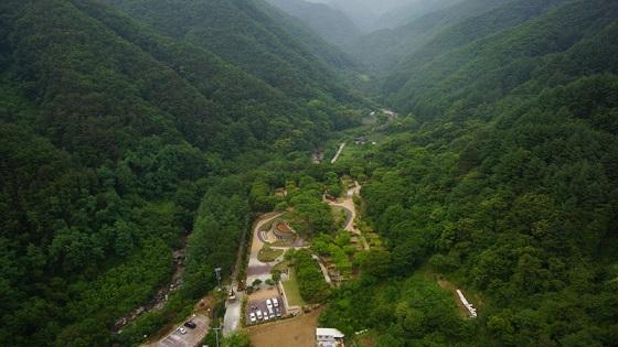웅장한 산이 품고 있는 금대에코힐링캠핑장.