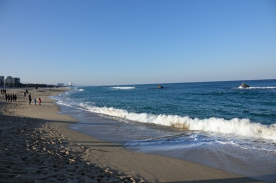 안목해변.