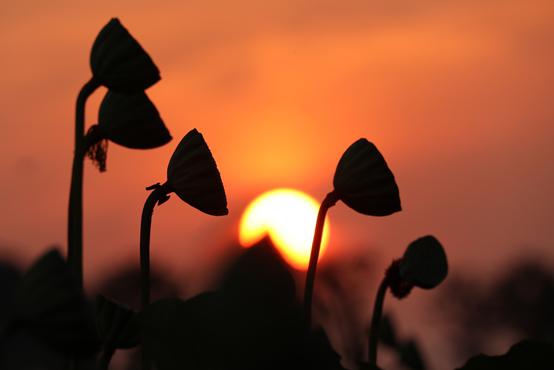 다시 밝아오는 새해에는 현실에서 구체적인 결심을 세워야 한다. <저작권자(c) 연합뉴스, 무단 전재-재배포 금지>