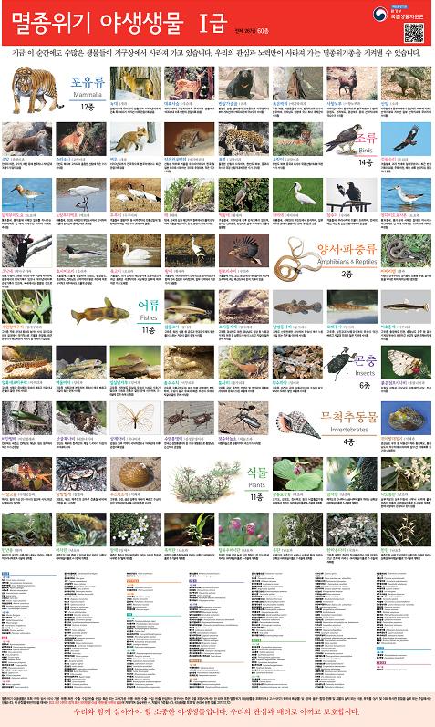 멸종위기 야생생물 포스터.