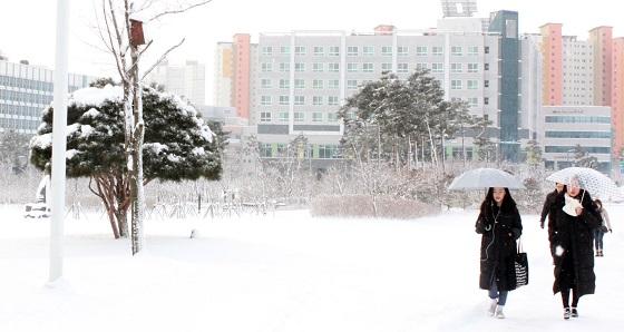 12.5㎝의 눈이 내린 10일 오전 충남 홍성에 도청 직원들이 눈밭을 헤치며 출근하고 있다.(사진=저작권자(c) 연합뉴스, 무단 전재-재배포 금지)