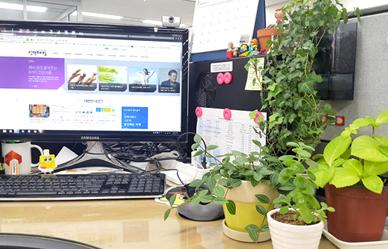 사무실에 식물을 두면 좋은 이유;JSESSIONID_KOREA=OzsZ8BrdAEG9LJC5V60h4_HBB6A0MrLcuVndEZJzQEIkuYR46ooT!1352769908!-1486145434