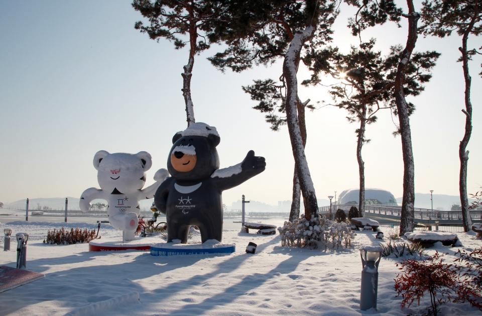 한눈에 보는 평창 '문화올림픽'…프로그램북 배포