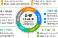 권역외상센터 10→13곳…초등생 독감 무료접종