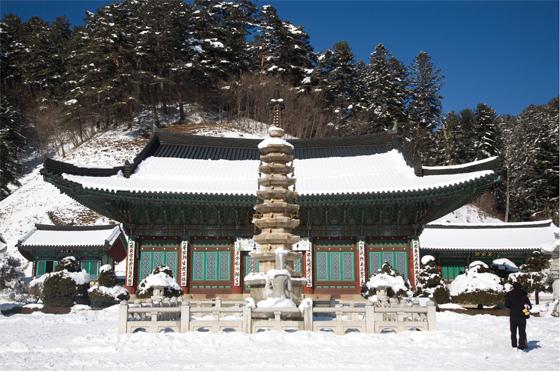 강원도 월정사. 겨울여행지로 많이 찾는 곳이다. (사진 = 문화체육관광부)