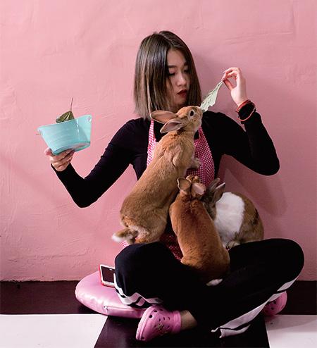 분홍색 예쁜 가게에서 토끼에게 먹이를 줄 수 있어 인기가 좋은 '버니카페'.(사진=C영상미디어