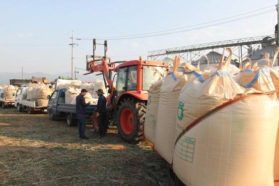 농림축산식품부는 6일 2022년까지 식량자급률을 55% 수준으로 끌어올리고 청년 창업농 1만명을 육성하는 내용을 담은