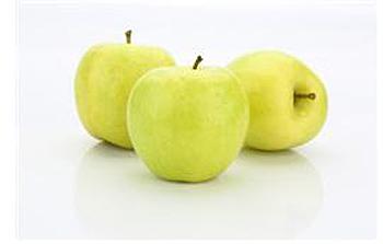 사과 '황옥'