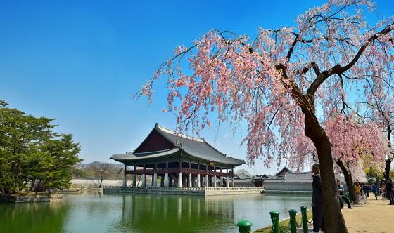 경회루 봄 풍경(사진 = 문화재청)