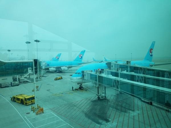 창밖으로 내다 본 공항 풍경.