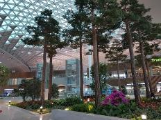 공항이야, 수목원이야?