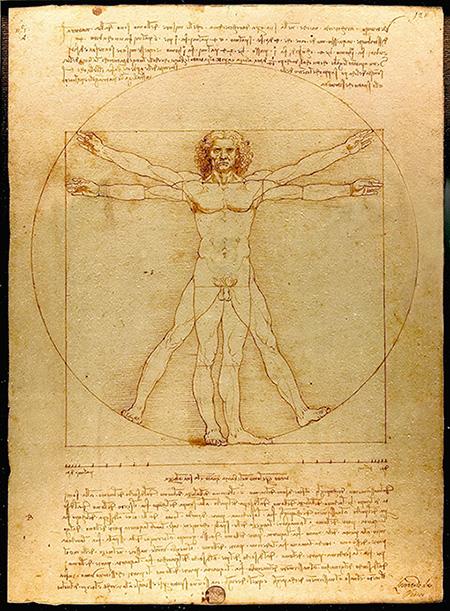 이상적 신체 비율과 관련한 레오나르도 다 빈치의 스케치. 얼굴 길이와 신장의 비율을 따지면 대체로 팔등신에 가깝다. (루크 비아투르)