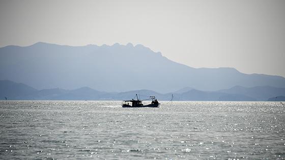 여자만의 이름을 지어준 여자도, 바다생명을 잉태하는 곳이자, 섬주민들의 섬살이 터전이다.