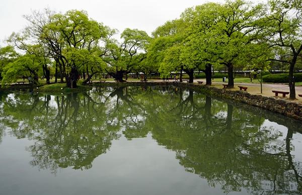 비춰진 연못이 더 아름다울까. 실제 모습이 더 운치있을까. 잔잔한 만큼 담기는 것도 선명하다.