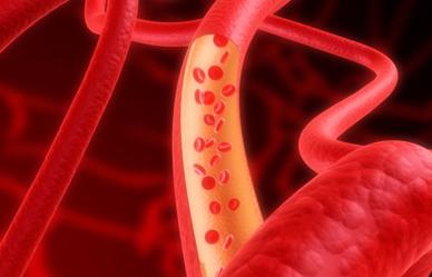 '젊은 혈관' 유지하는 10가지 방법
