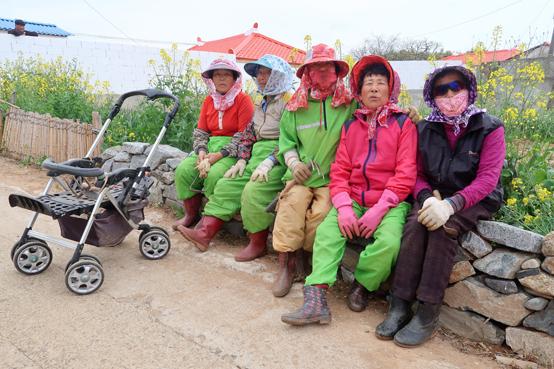 꽃씨를 뿌리던 날 만난 연홍도 어머니들