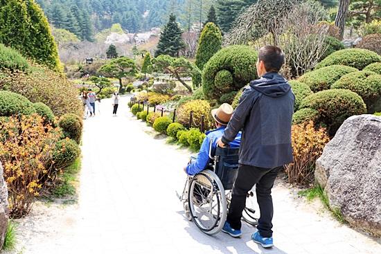아침고요수목원 하경정원 휠체어를 타고있는 아버지와 남편